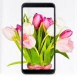Мобильный телефон ASUS Zenfone Max Pro (M1) ZB602KL Black Фото