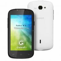 Мобильный телефон GIGABYTE GSmart Tuku T2 Black-White Фото