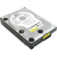 "Жесткий диск WD 3.5""   320Gb Фото"