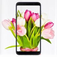 Мобильный телефон ASUS ZenFone Max Pro (M1) ZB602KL 3/32 GB Black Фото