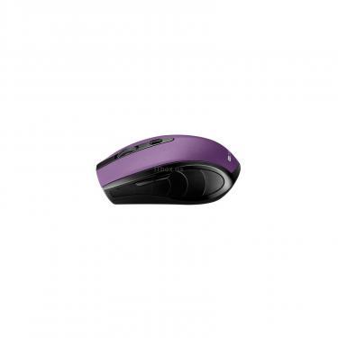 Мышка Canyon CNS-CMSW08V Wireless Black/Purple Фото 2