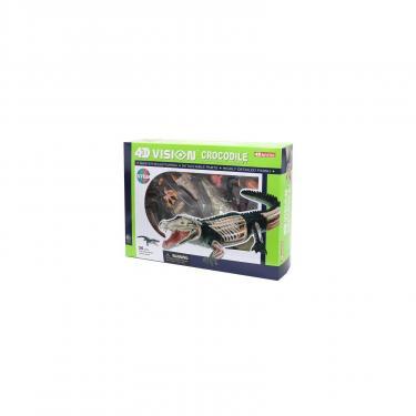 Пазл 4D Master Объемная анатомическая модель Крокодил Фото