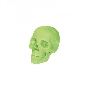 Пазл 4D Master Объемная анатомическая модель Череп человека светя Фото 1